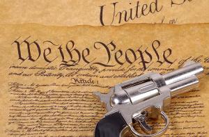 constitutiongun